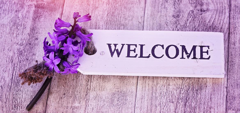 hyacinth 787758 1170x550 - Welcome to My World